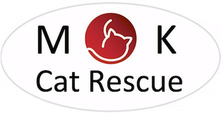 MK Cat Rescue : Passionate about giving cats a second chance
