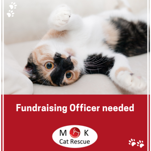 fundraising officer